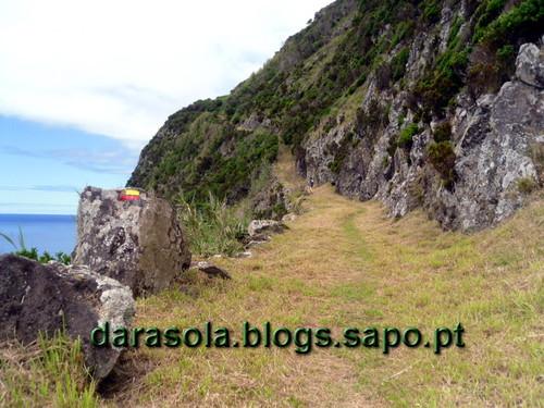 Azores_flores_faja_grande_11.JPG