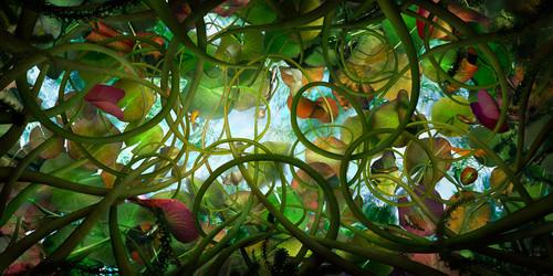 catherine-nelson-submerged-designboom-1800.jpg