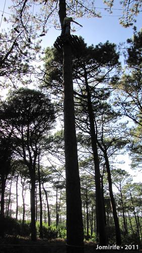Parque Aventura: Lá muito no alto