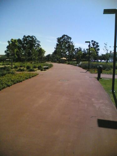 Cantanhede: Parque de S. Mateus