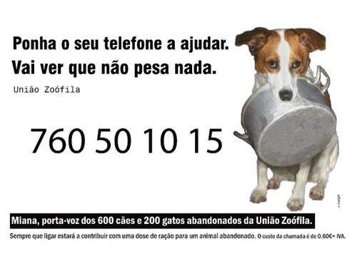 Chamda dos caninos.jpg