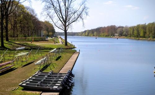 Amsterdamse-Bos-5.jpg