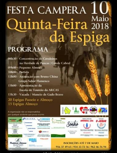 FESTA CAMPERA.jpg
