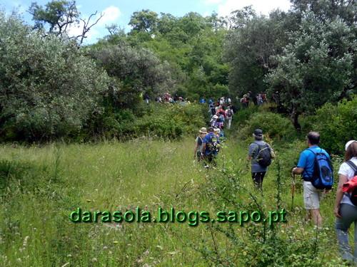 Buracas_Casmilo_24.JPG