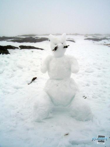 Boneco de neve em forma de gato (1)