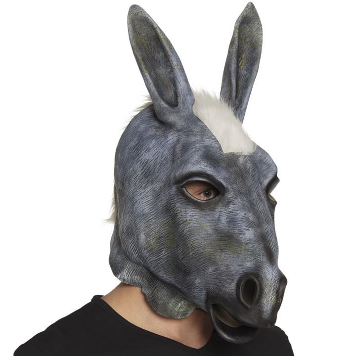Ser figura de burro.jpg