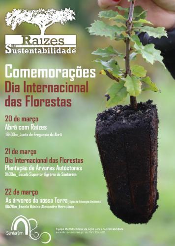 cartaz Com. Dia Inter, das Florestas.png