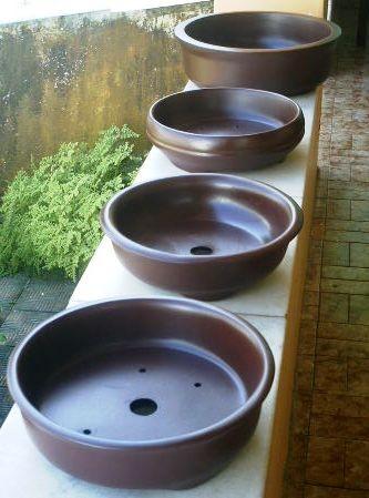 limpar vasos de bonsai