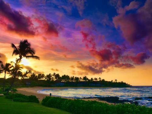Havai2.jpg