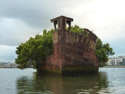 naufragio seco II.jpg
