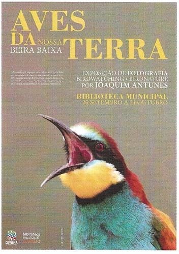 Aves da Terra.jpg