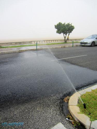 Regador virado para a estrada só serve para lavar os carros na Figueira da Foz (4) [en] Watering facing the road only serves to wash the cars