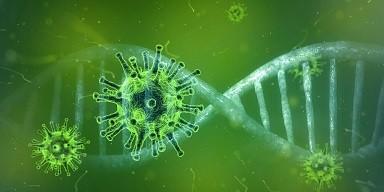 coronavirus-4833754_1280.jpg