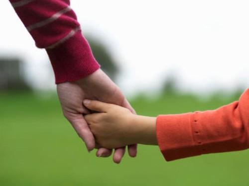 Sucesso Escolar Apoio Pais