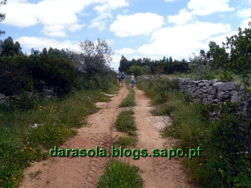 Buracas_Casmilo_33.JPG