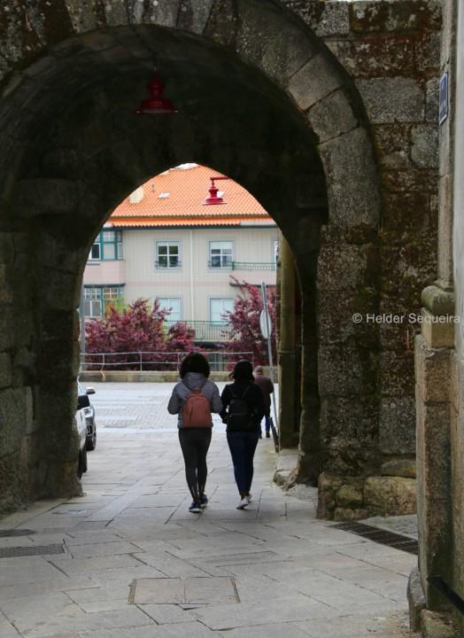 Porta da ERVA - HS.jpg