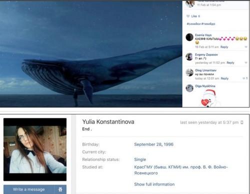 bluewhale-850x660.jpg