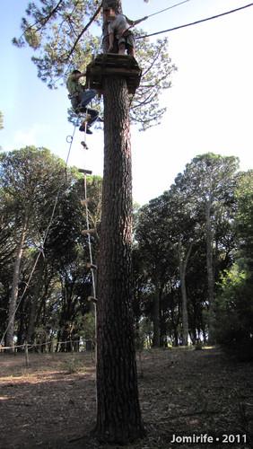Parque Aventura: Percurso Negro - Lá em cima