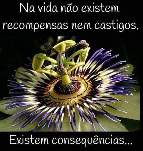 FB_IMG_1488979736430.jpg