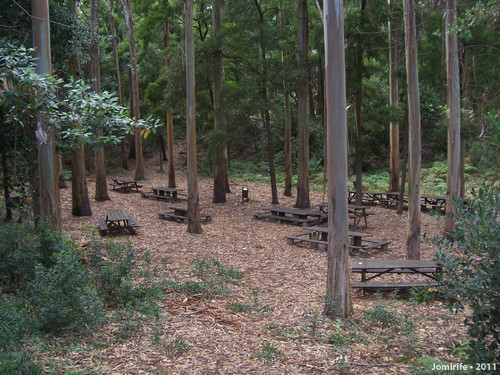 Parque merendas Dolina Cedros na Serra Boa Viagem
