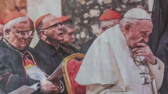 Papa abatido (1).JPG