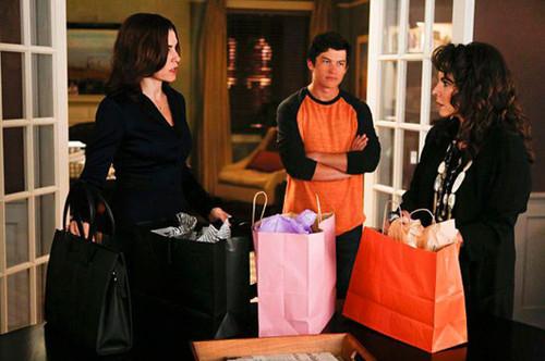 The_Good_Wife_-_The_5th_Season 6.jpg
