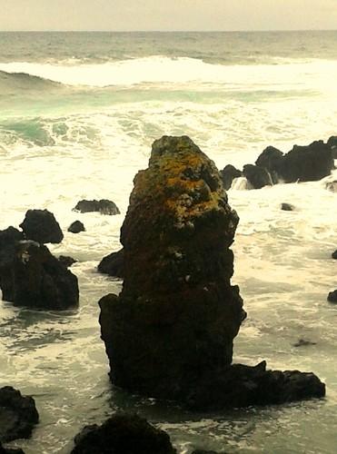 Uma pedra-personagem dos nossos mares...