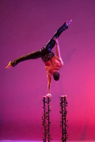Novo Circo (1).jpg