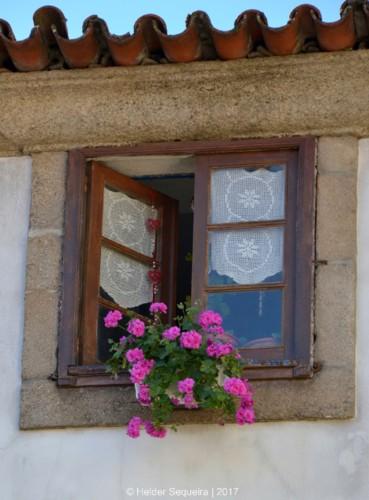 janela - guarda - HS.jpg