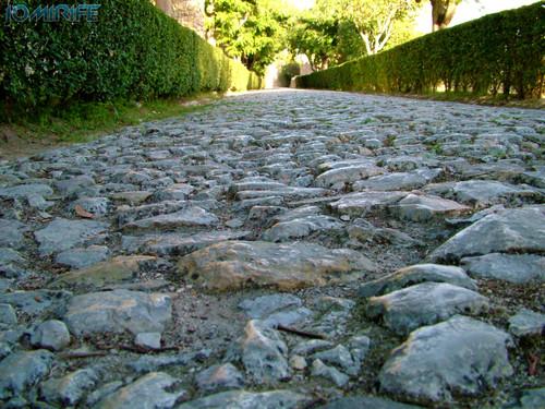 Castelo de Montemor-o-Velho - Caminho empedrado (1) [en] Castle of Montemor-o-Velho - Paved path