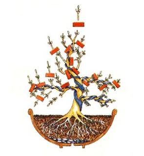 Criar bonsai
