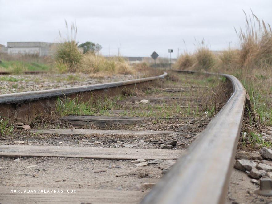 Caminhos de ferro - Foto Maria das Palavras