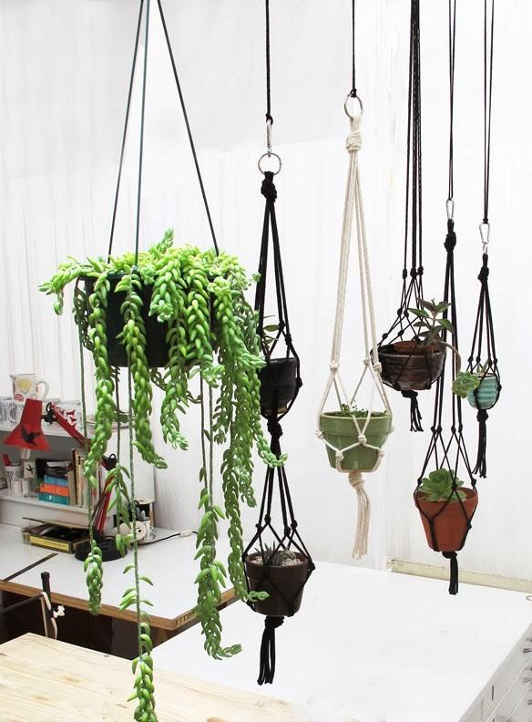 hanging-garden2.jpg