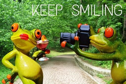 frog-889435__340.jpg