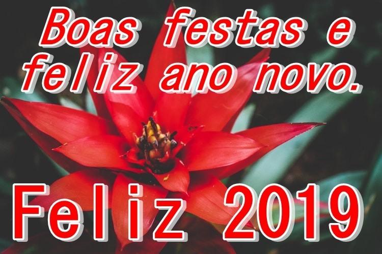 Boas Festas!!.jpg