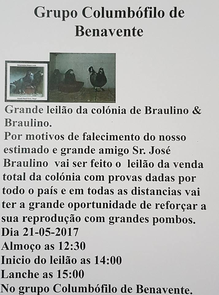 Leilão Benavente.jpg