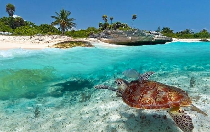 Zanzibar-Holiday-Special-Gold-Zanzibar-beach-house
