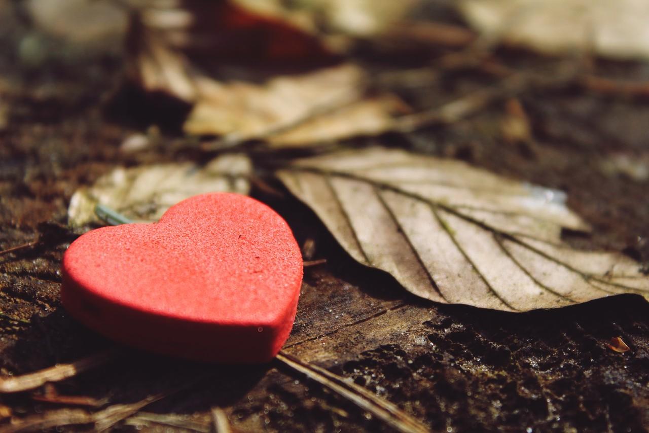 heart-1318850.jpg