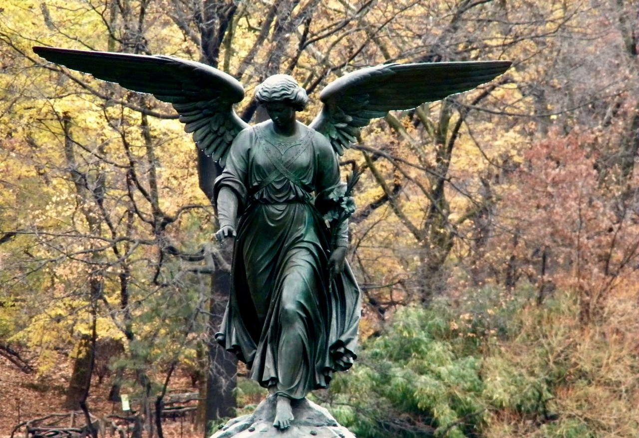 fall_colors_new_york_city.jpg