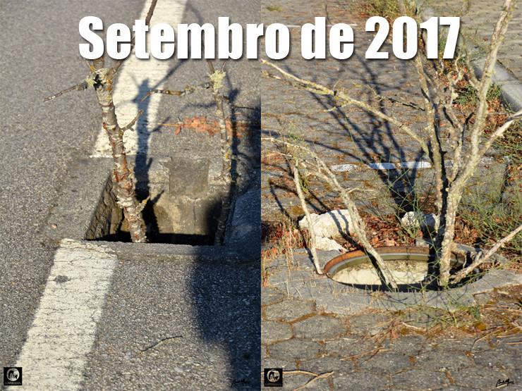 02 03 Setembro 2017 - 740.jpg