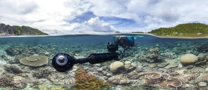 perseguindo-corais-netflix-july14.jpg