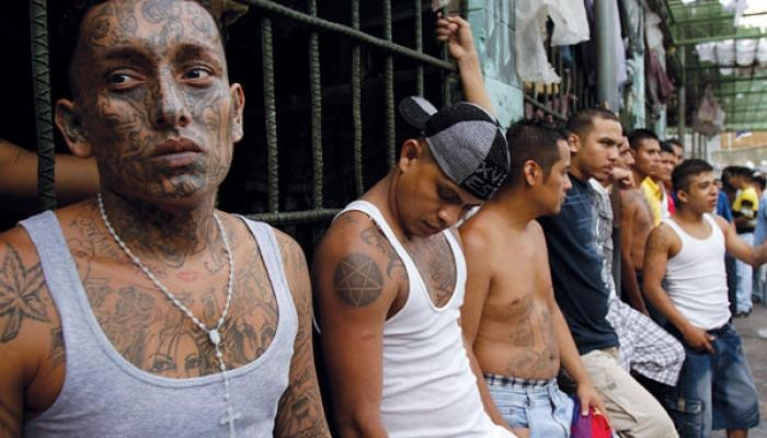 01cartel-droga-drug-gang-seopapese.jpg