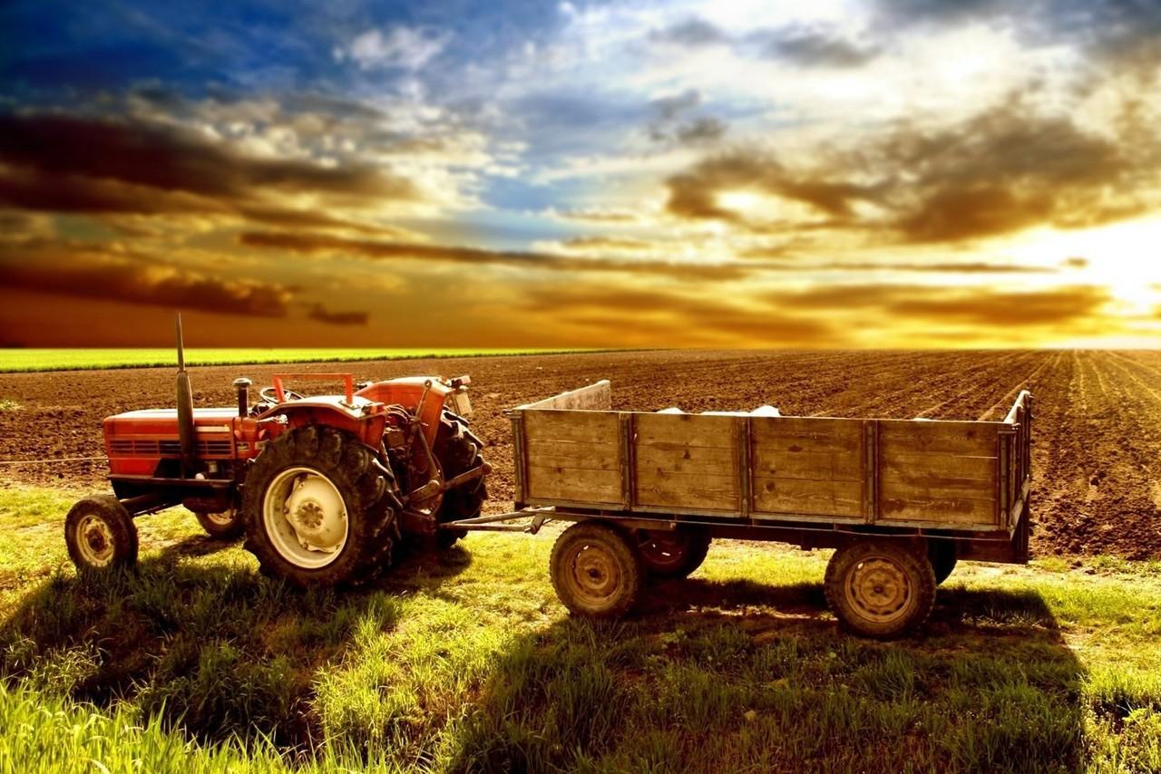 Poze-agricultura.jpg
