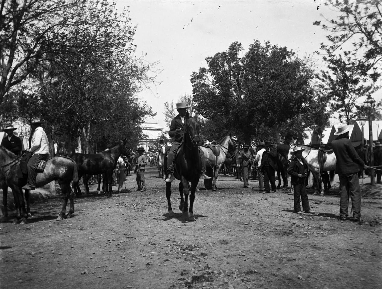 Feira de gado, 1903, fotógrafo ni, in a.f. C.M.L.