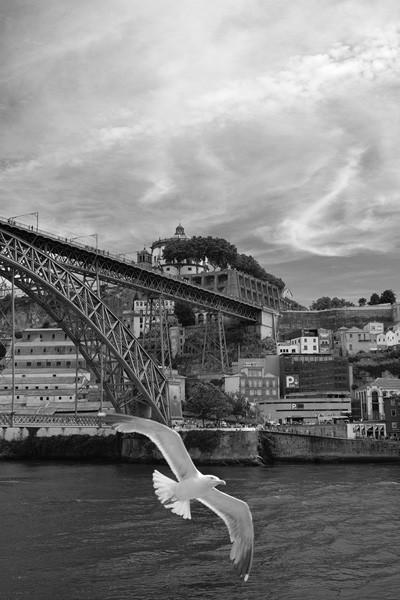 Porto2018_11_600.jpg