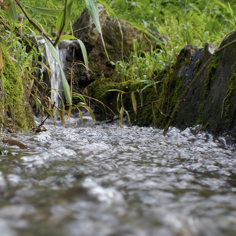 Desafio #quenuncanosfaltemsorrisos | 18. Água