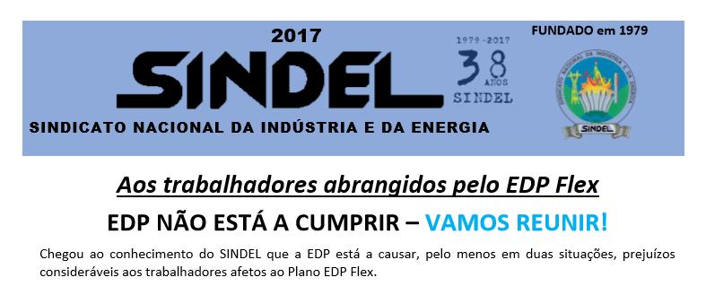Sindel.Flex - Cópia.png
