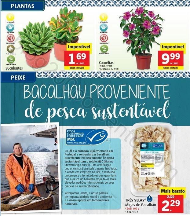 Promoções-Descontos-27257.jpg