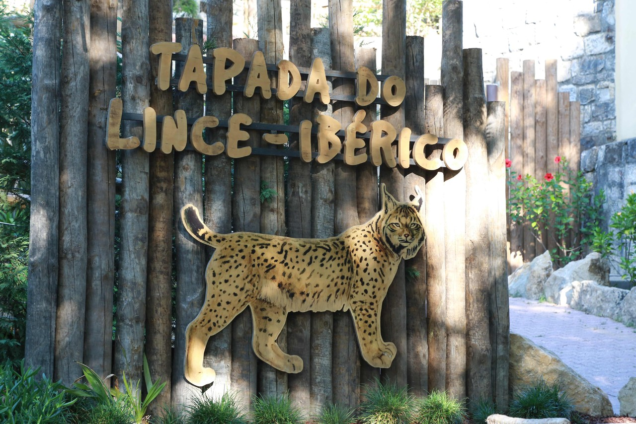 Tapada do Lince Ibérico_Zoo.jpg