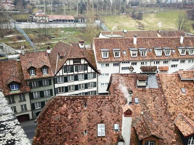 Berna31.jpg